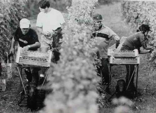 Harvest 2005